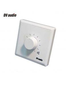 DV audio P-60