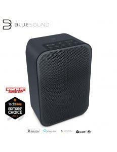BlueSound PULSE FLEX 2i